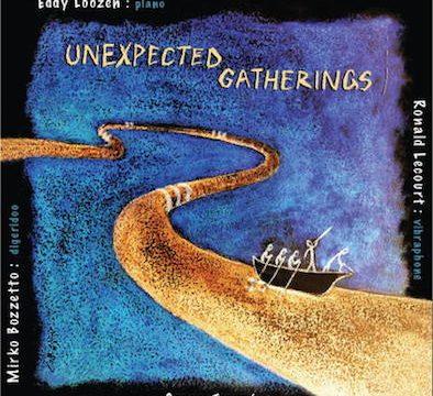 Eddy Loozen - unexpected gatherings